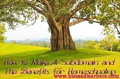 How to Make A Subdomain and The Benefits for Homeschooling