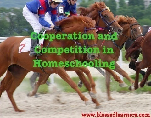 Cooperation and Competition in Homeschooling