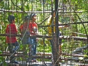 Daddy and his sons were in the mini bird park (or giant bird cage?)