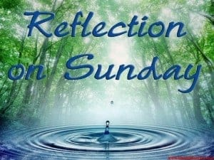 Reflection on Sunday