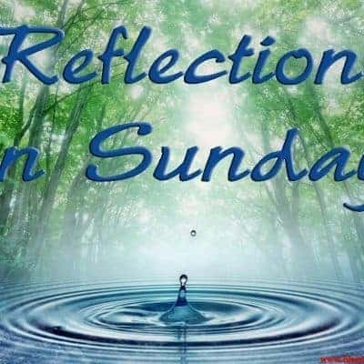 A Sunday Reflection on Loving Indiscriminately