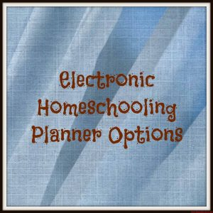 Electronic Homeschooling Planner Options