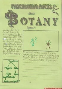 Fascinating Botany