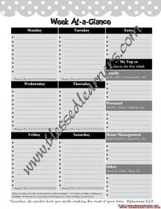 Weekly At A Glance will elaborate the monthly goal setting.