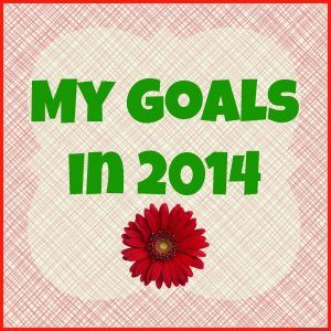 My Goals in 2014