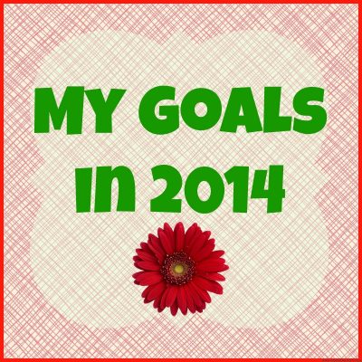 My Goals On February 2014