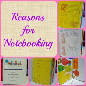 Reasons for Notebooking