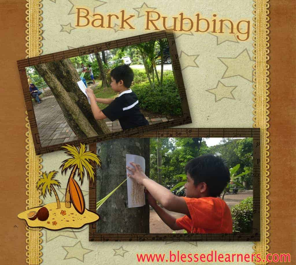 To show different kinds of bark patterns, kids did a bark rubbing activity.