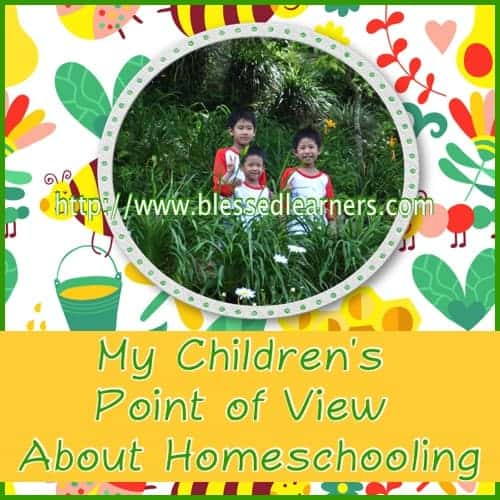 My Children's Point of View About Homeschooling