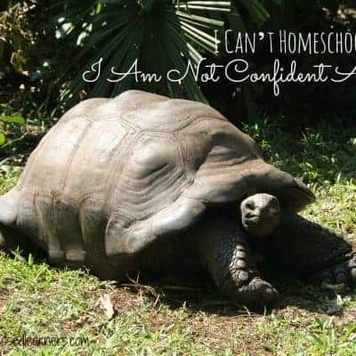 I Can't Homeschool Because I Am Not Confident At All