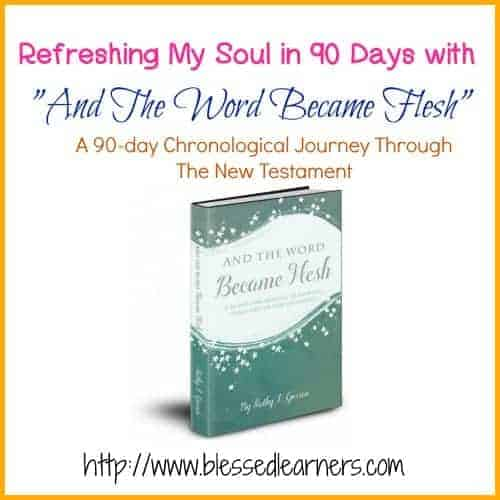 A 90-day Chronological Journey Through The New Testament