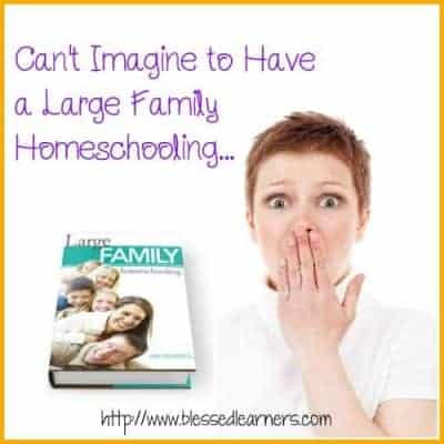 "Can't Imagine To Have ""Large Family Homeschooling"" {Review}"