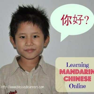 Learning Mandarin Chinese Online with the Middleburry Interactive