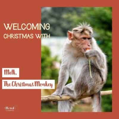 Welcoming Christmas with Melk, the Christmas Monkey