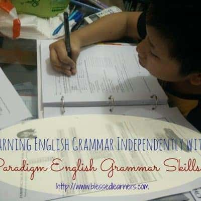 Learning English Grammar Independently with Paradigm English Grammar Skills