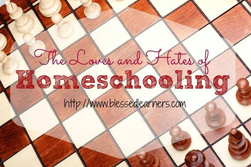 The Loves and Hates of Homeschooling
