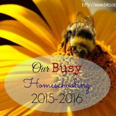 Our Busy Homeschooling 2015-2016