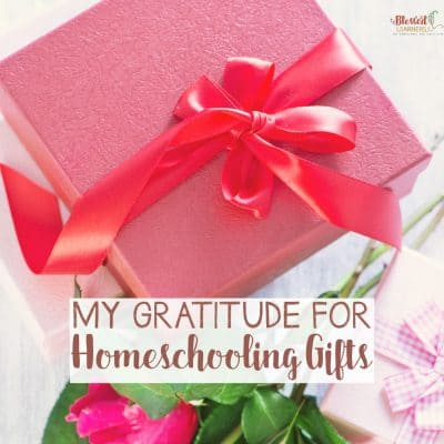 My Gratitude For Homeschooling Gifts
