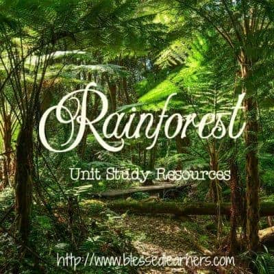 {Limited FREE Printables} Rainforest Unit Study Resources
