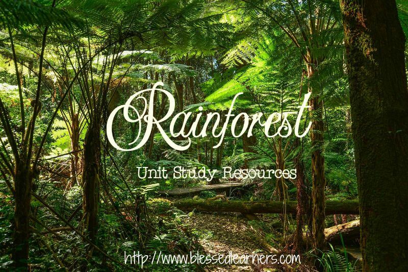 Rainforests are the home of various living creatures. It is an endless topic to explore. Here are some rainforest unit study resources we would love to share.