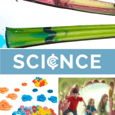 Back To School Science Kits from Educents