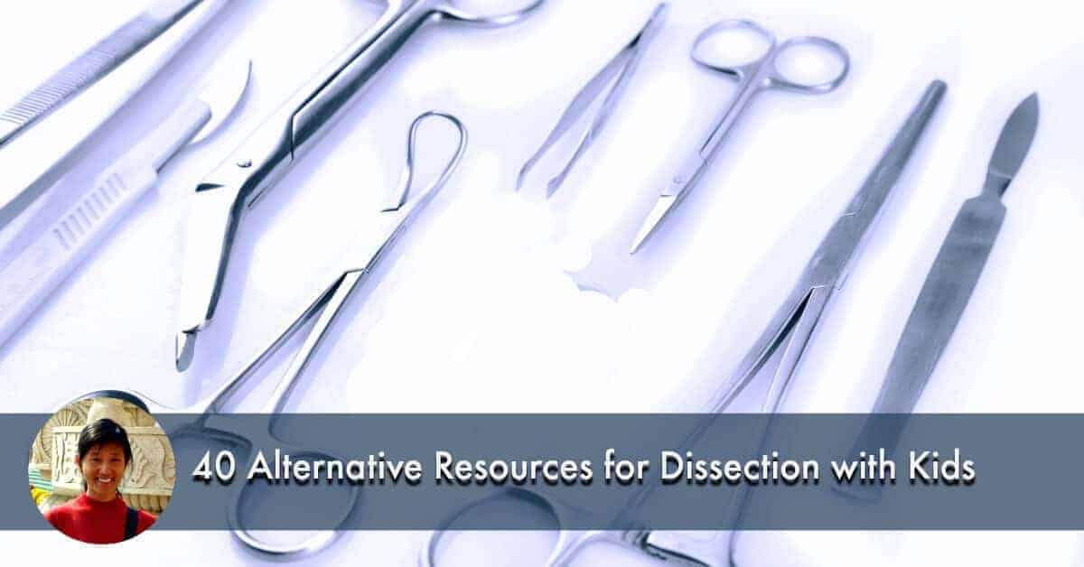 40 Alternative Resources For Dissection With Kids Blessed Learners
