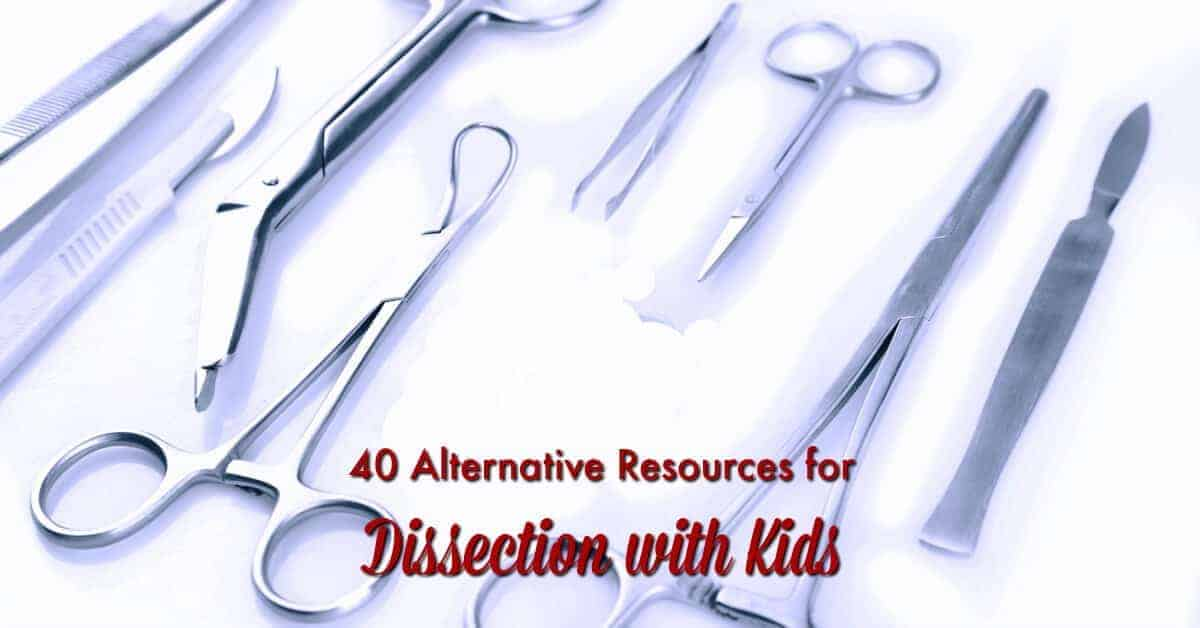 You cannot do dissection with kids for some reasons? Don't worry. Here are 40 alternative resources for dissection with kids.