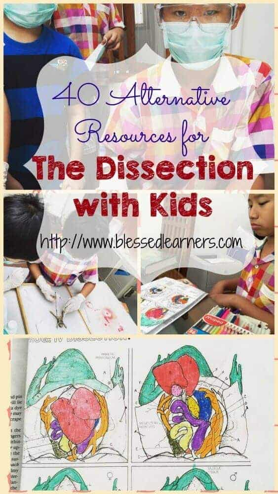40 Alternative Resources for Animal Dissection with Kids.