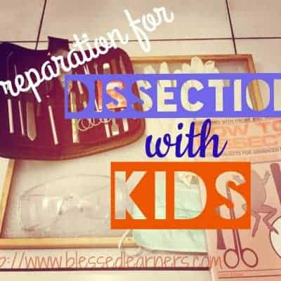 Preparation for Dissection with Kids