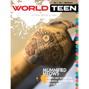 WORLDteen_cover_300x300