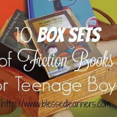10 Box Sets of Fiction Books for Teenage Boys