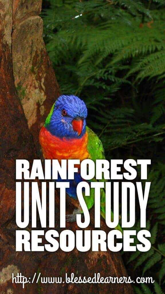Rainforest Unit Study Resources