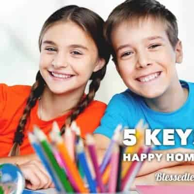 5 Keys to Create A Happy Homeschooling