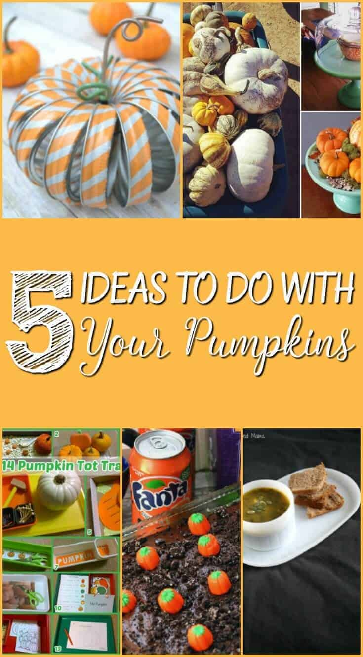 5-ideas-to-do-with-your-pumpkins-pin