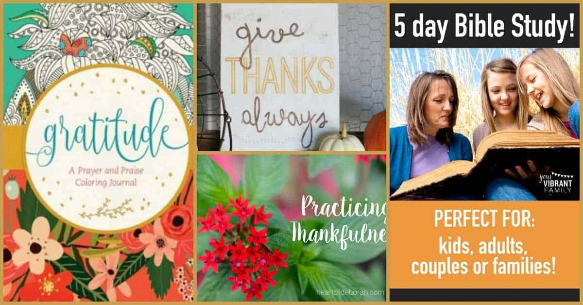 Why do you need to show people for being grateful? How can you show your gratitude? Get some wonderful tips & ideas for being grateful at family fun friday.