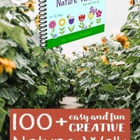 I would like to share 100+Easy and Fun Creative Nature Walk Ideas for all Ages. I am sure everyone will get more inspirationfor doing the nature walk activities after reading this book.