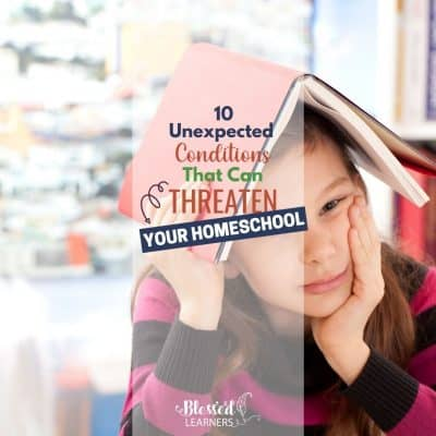 The endpoint of homeschool is being burnout. Here are 10 most common homeschool burnout triggers threatening homeschooling families.