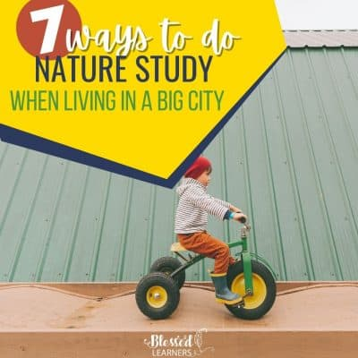 7 Ways to do Nature Study When Living in a Big City