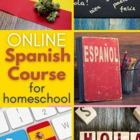 Spanish is another language that worths learning. We are very lucky to have the chance to learn with Vista Online Spanish Course
